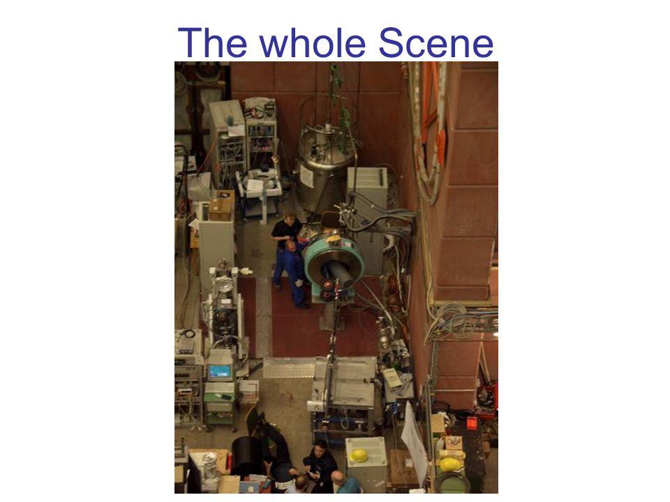 The whole Scene
