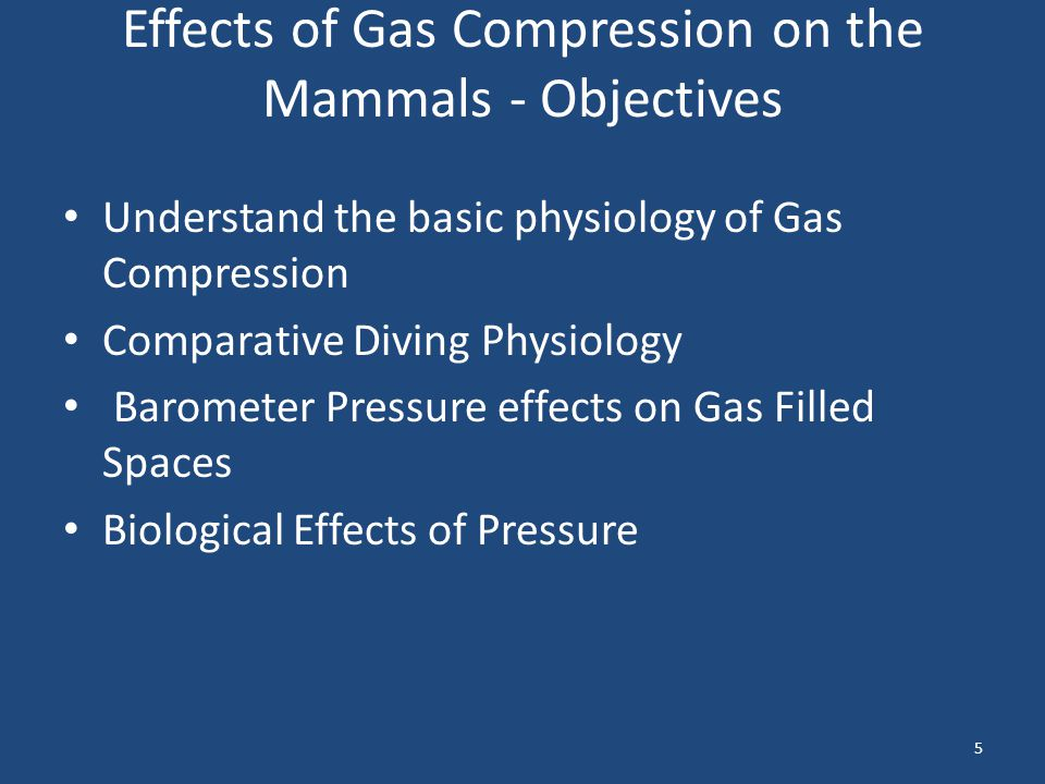 Effects of Gas Compression on the Mammals - Objectives Understand the basic physiology of Gas Compression Comparative Diving Physiology Barometer Pres