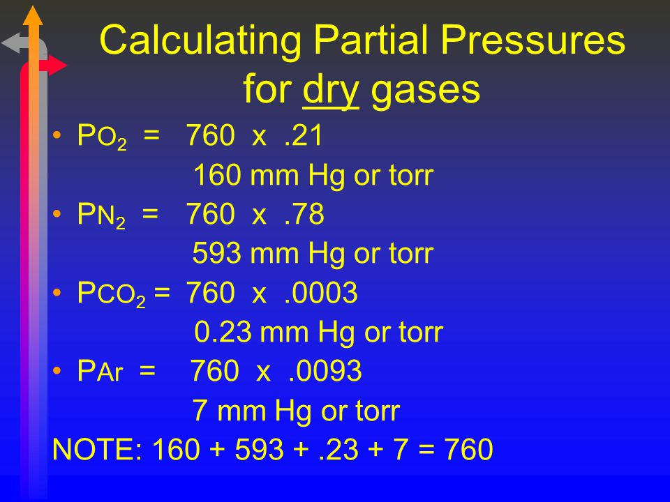 Calculating Partial Pressures for dry gases P O 2 = 760 x.21 160 mm Hg or torr P N 2 = 760 x.78 593 mm Hg or torr P CO 2 = 760 x.0003 0.23 mm Hg or to