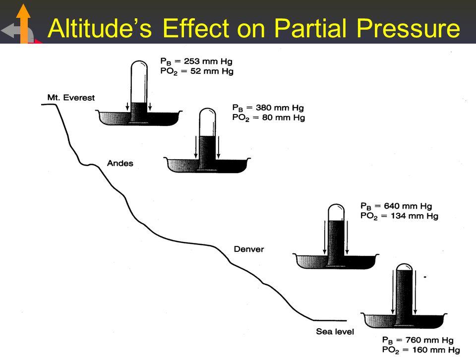 Altitudes Effect on Partial Pressure