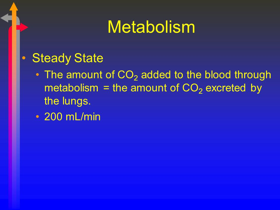 Metabolism Steady State The amount of CO 2 added to the blood through metabolism = the amount of CO 2 excreted by the lungs. 200 mL/min