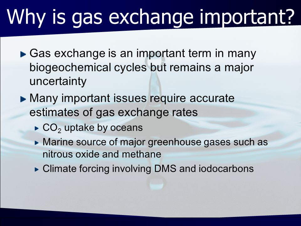 What determines gas exchange.Gas exchange is determined by: 1.