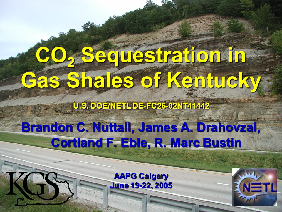 CO 2 Sequestration in Gas Shales of Kentucky Brandon C.