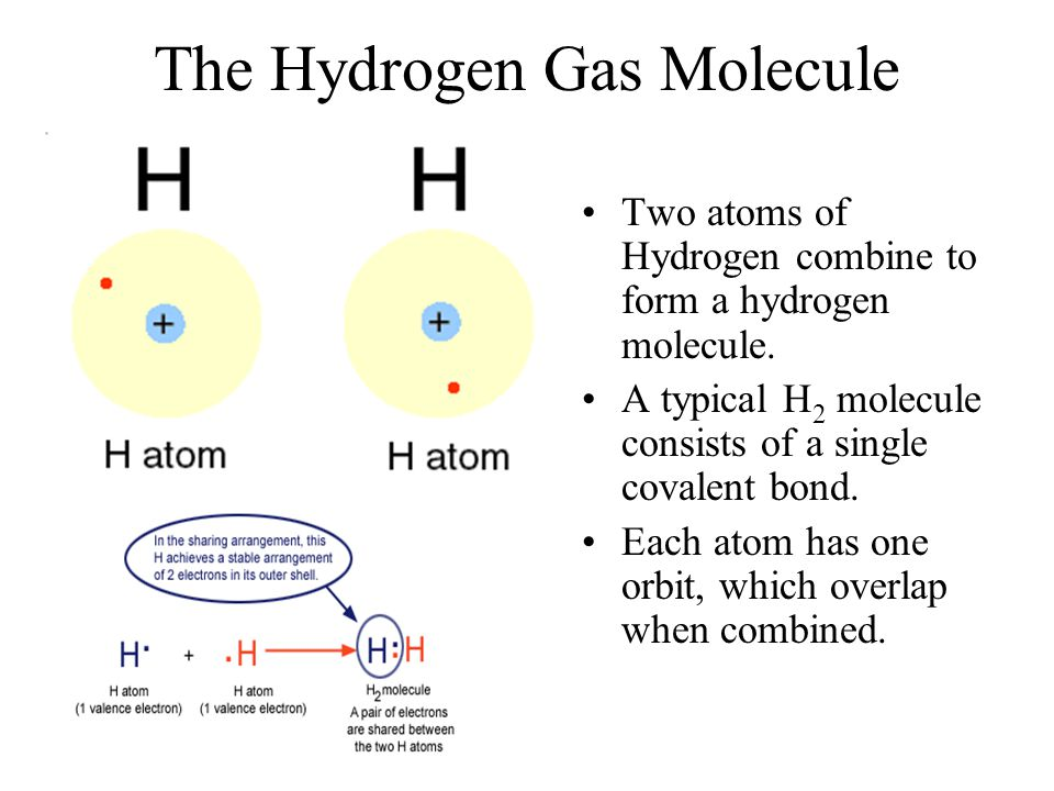 The Hydrogen Gas Molecule Two atoms of Hydrogen combine to form a hydrogen molecule. A typical H 2 molecule consists of a single covalent bond. Each a