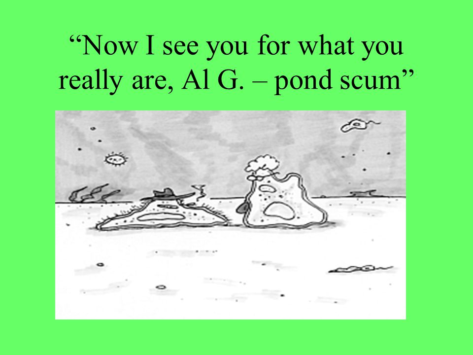 Now I see you for what you really are, Al G. – pond scum