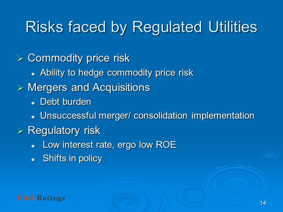 FitchRatings 13 Credit Outlook: Regulated Utilities THEMES Back to Basics Back to Basics Gas and power price fluctuation Gas and power price fluctuati