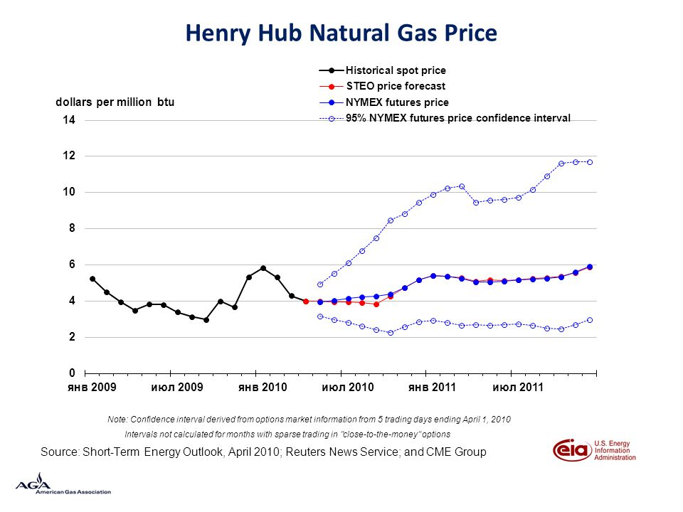 Henry Hub Natural Gas Price