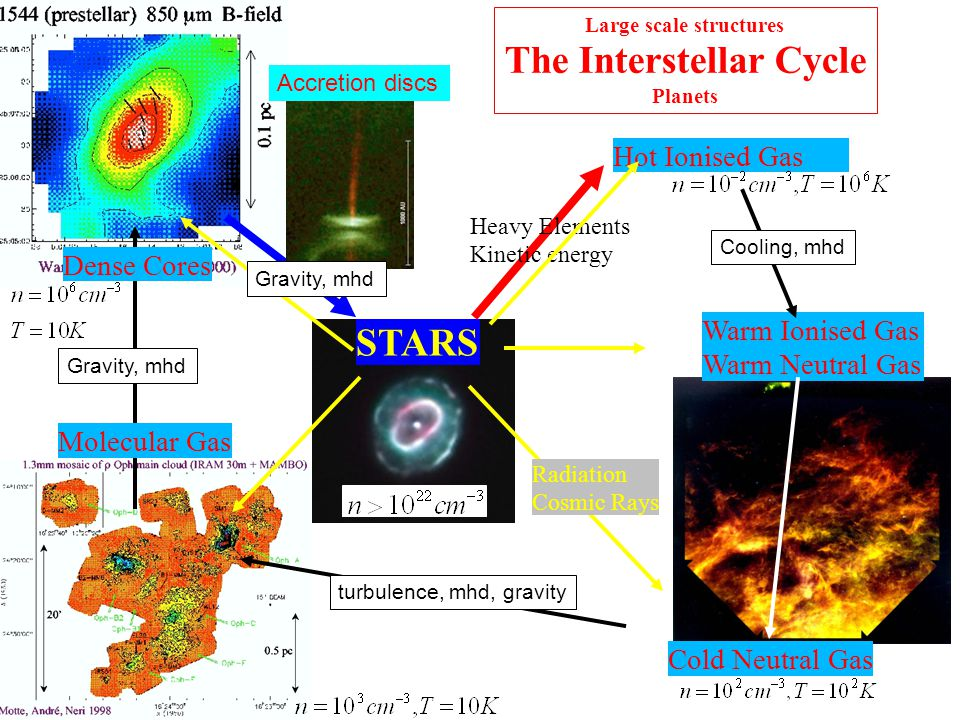STARS Hot Ionised Gas Warm Ionised Gas Warm Neutral Gas Cold Neutral Gas Heavy Elements Kinetic energy Radiation Cosmic Rays Molecular Gas Dense Cores Cooling, mhd turbulence, mhd, gravity Gravity, mhd Accretion discs Large scale structures The Interstellar Cycle Planets