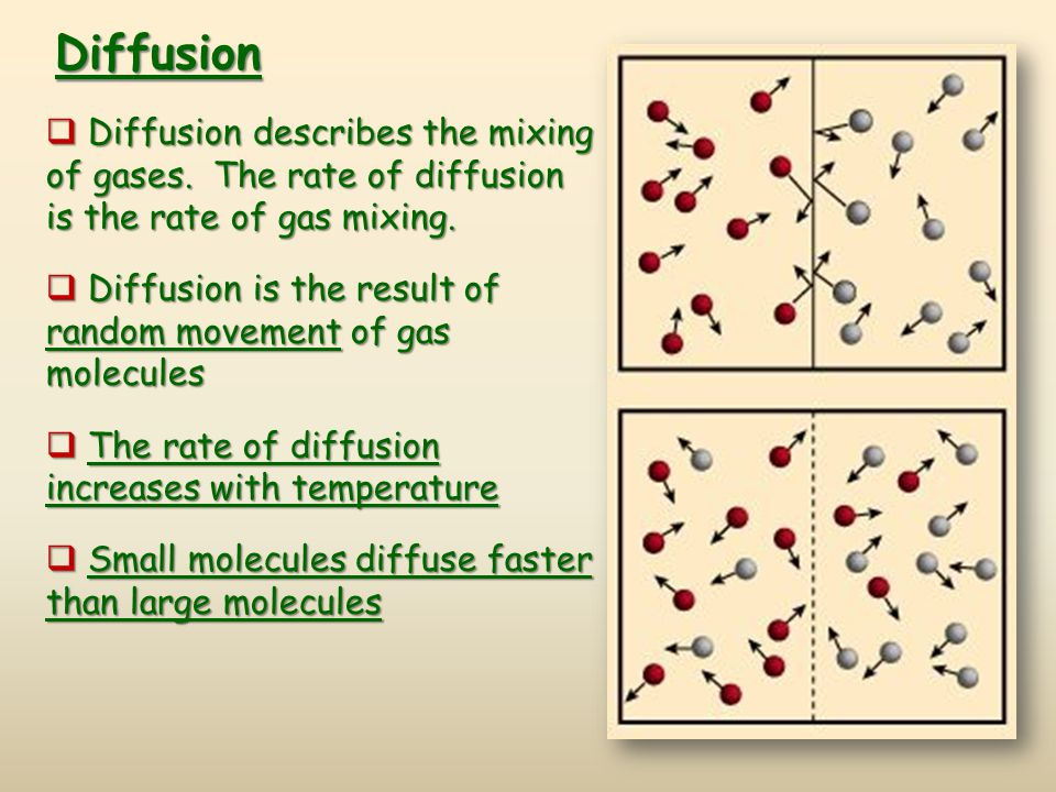 Diffusion describes the mixing of gases.The rate of diffusion is the rate of gas mixing.