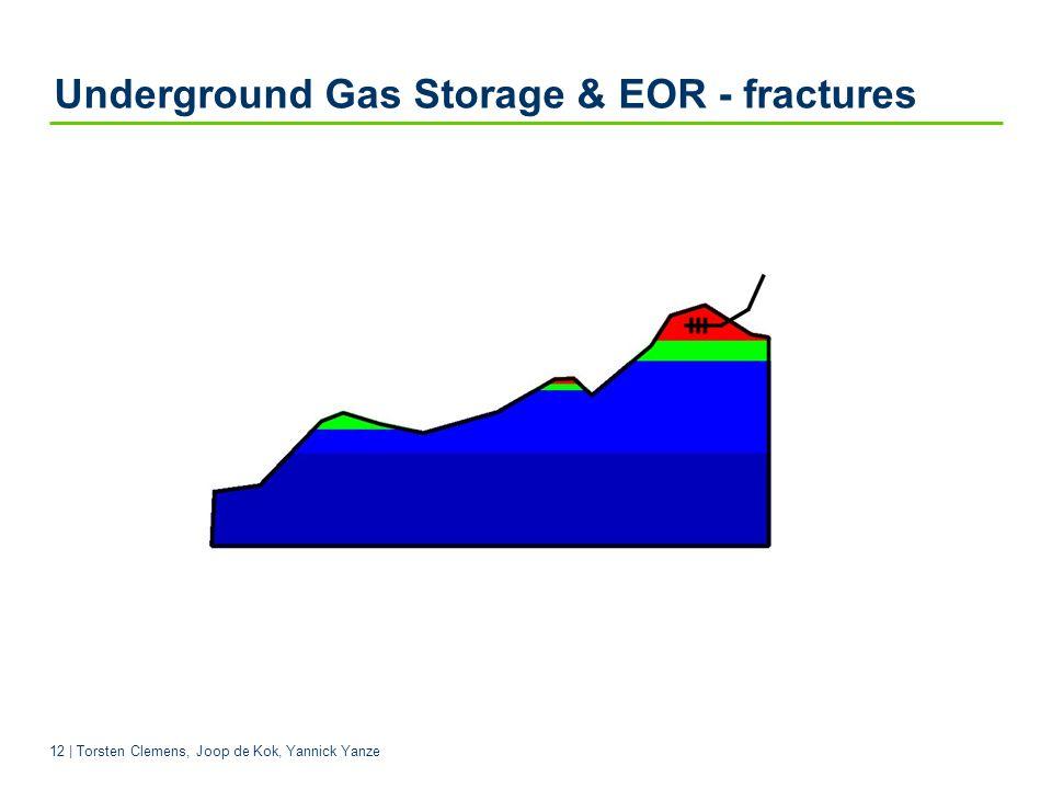 12 | Torsten Clemens, Joop de Kok, Yannick Yanze Underground Gas Storage & EOR - fractures