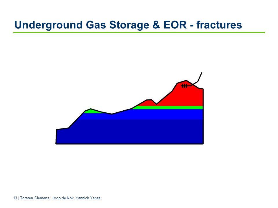 13 | Torsten Clemens, Joop de Kok, Yannick Yanze Underground Gas Storage & EOR - fractures