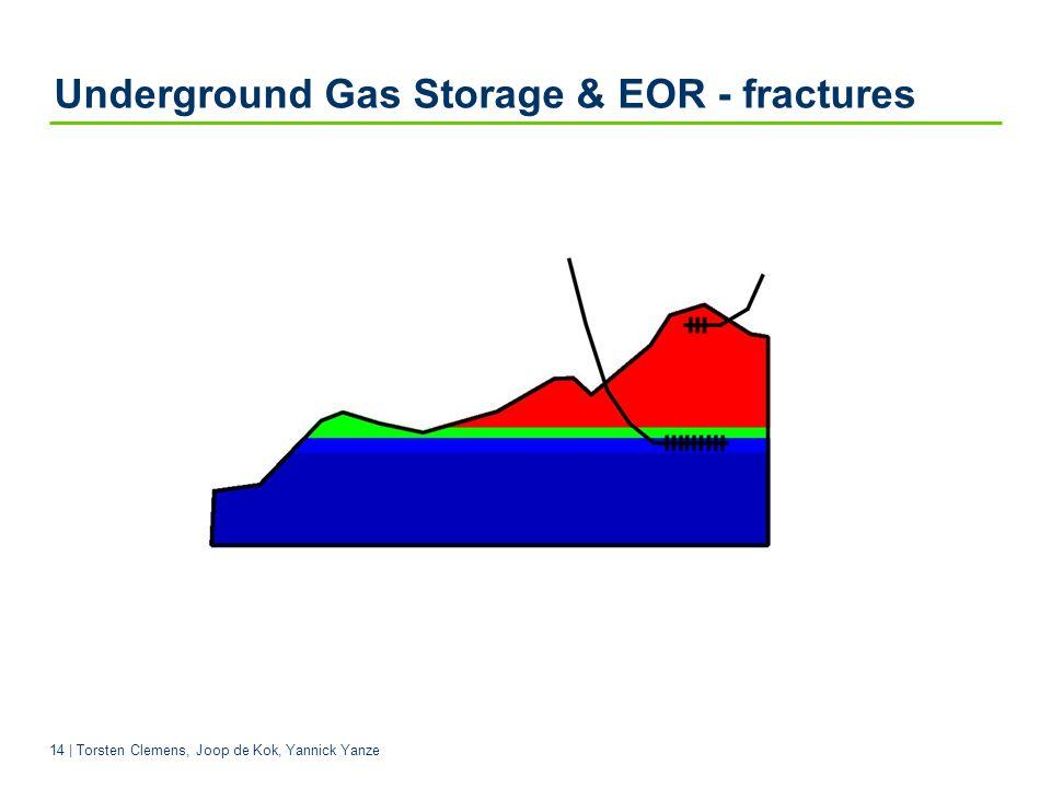 14 | Torsten Clemens, Joop de Kok, Yannick Yanze Underground Gas Storage & EOR - fractures