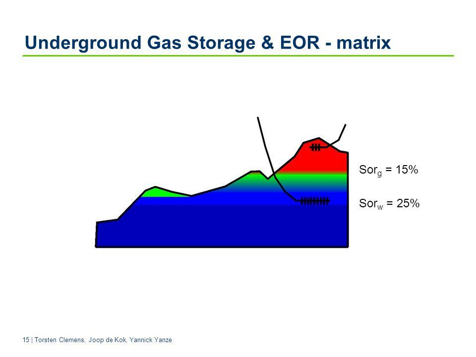 15 | Torsten Clemens, Joop de Kok, Yannick Yanze Sor w = 25% Sor g = 15% Underground Gas Storage & EOR - matrix