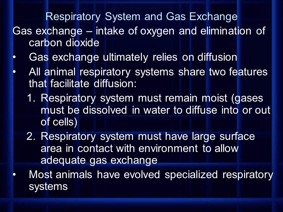 In general, gas exchange in most respiratory systems occurs in the following stages: 1.air or water, containing oxygen, is moved past a respiratory system by bulk flow (fluids or gases move in bulk through relatively large spaces, from areas of higher pressure to areas of lower pressure) – commonly facilitated by muscular breathing movements 2.oxygen and carbon dioxide are exchanged through the respiratory surface by diffusion; oxygen is carried into capillaries of circulatory system and carbon dioxide is removed 3.Gases are transported between respiratory system and tissues by bulk flow of blood as it is pumped throughout body by heart 4.gases are exchanged between tissues and circulatory system by diffusion (oxygen diffuses out into tissue and carbon dioxide diffuses into capillaries based on concentration gradients)