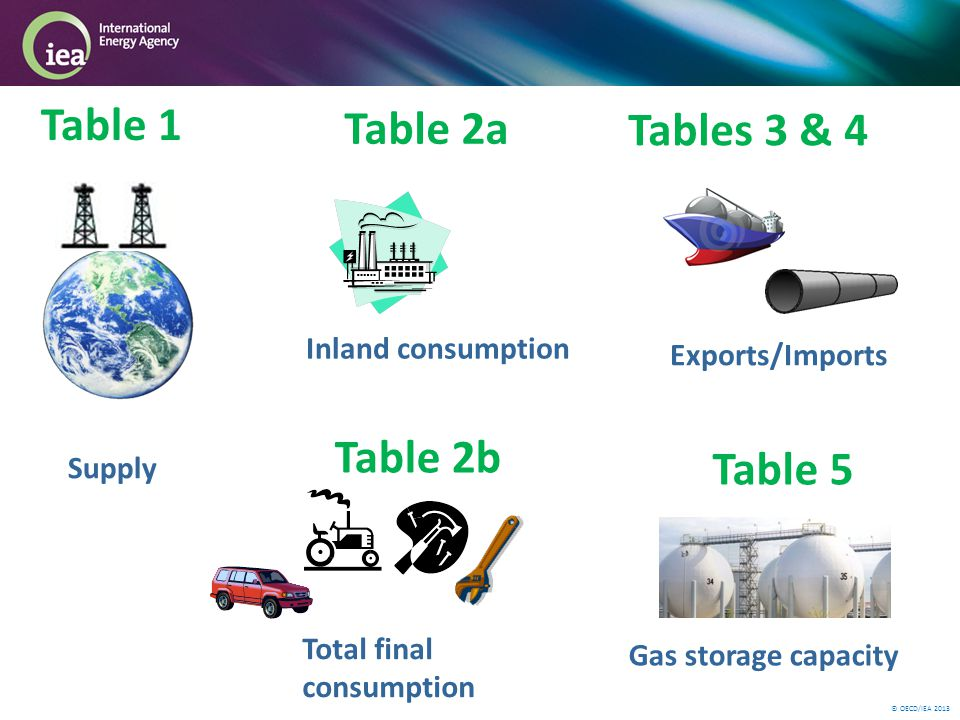 © OECD/IEA 2013 Table 2b Inland consumption Table 1 Table 2a Tables 3 & 4 Supply Total final consumption Exports/Imports Table 5 Gas storage capacity