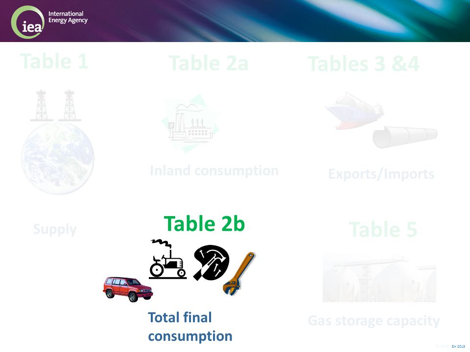 © OECD/IEA 2013 Table 2b Inland consumption Table 1 Table 2a Tables 3 &4 Supply Total final consumption Exports/Imports Table 5 Gas storage capacity