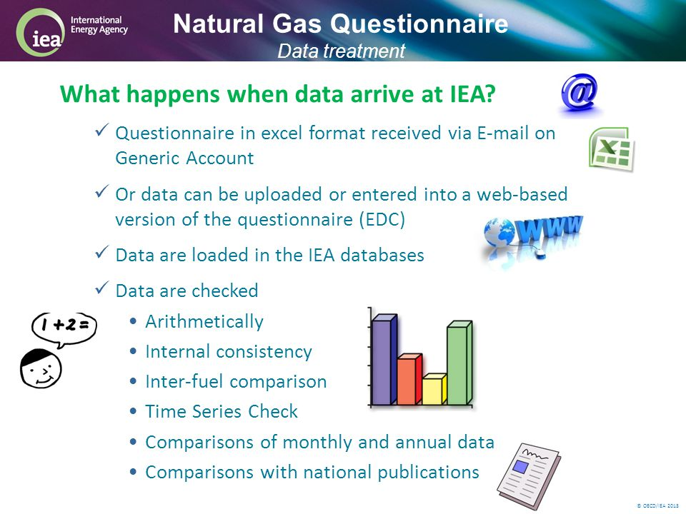 © OECD/IEA 2013 What happens when data arrive at IEA.