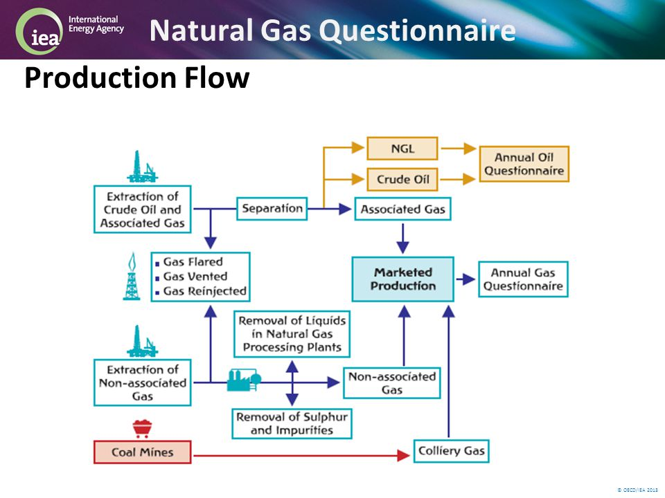 © OECD/IEA 2013 Natural Gas Questionnaire Production Flow