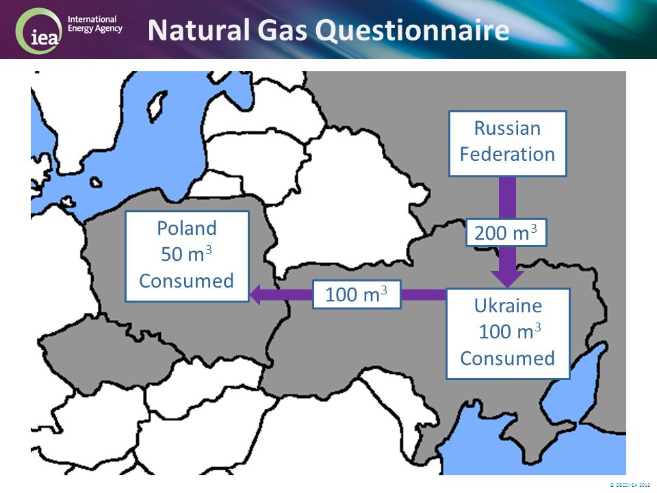 © OECD/IEA 2013 Natural Gas Questionnaire 200 m 3 Russian Federation Poland 50 m 3 Consumed 100 m 3 Ukraine 100 m 3 Consumed