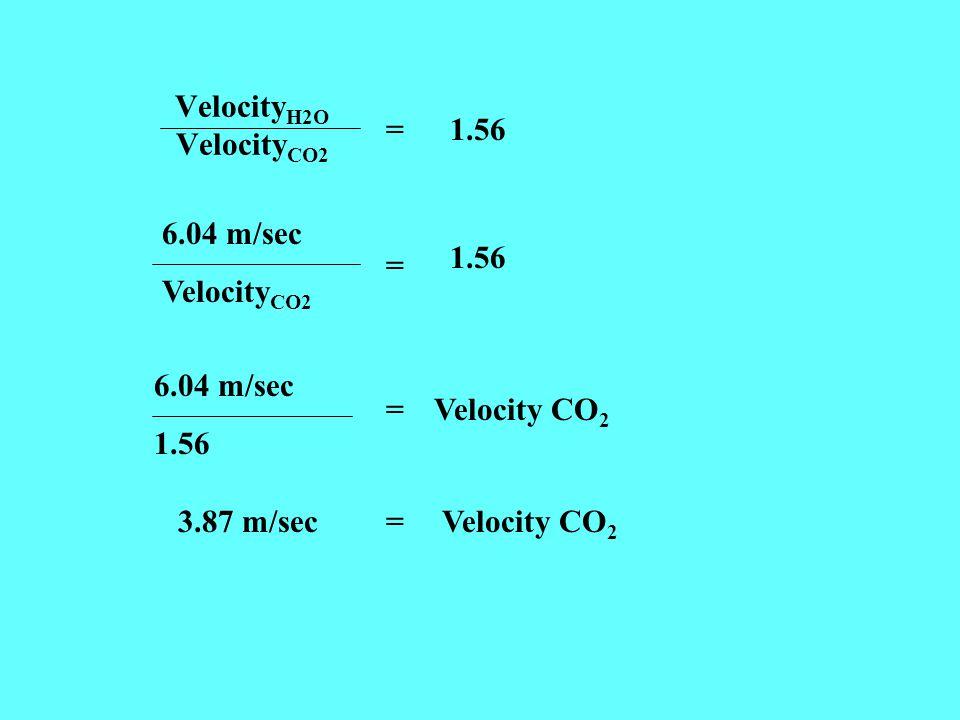Velocity H2O Velocity CO2 =1.56 6.04 m/sec Velocity CO2 = 1.56 6.04 m/sec 1.56 =Velocity CO 2 3.87 m/sec =Velocity CO 2