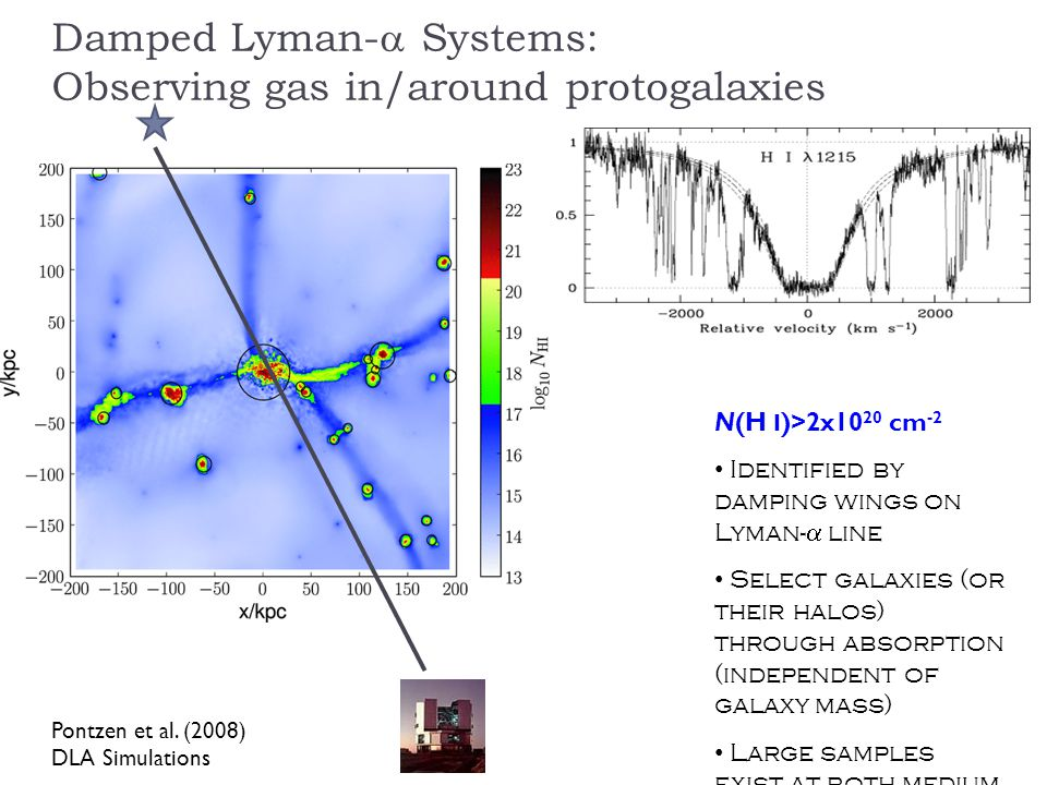 Damped Lyman- Systems: Observing gas in/around protogalaxies Pontzen et al.