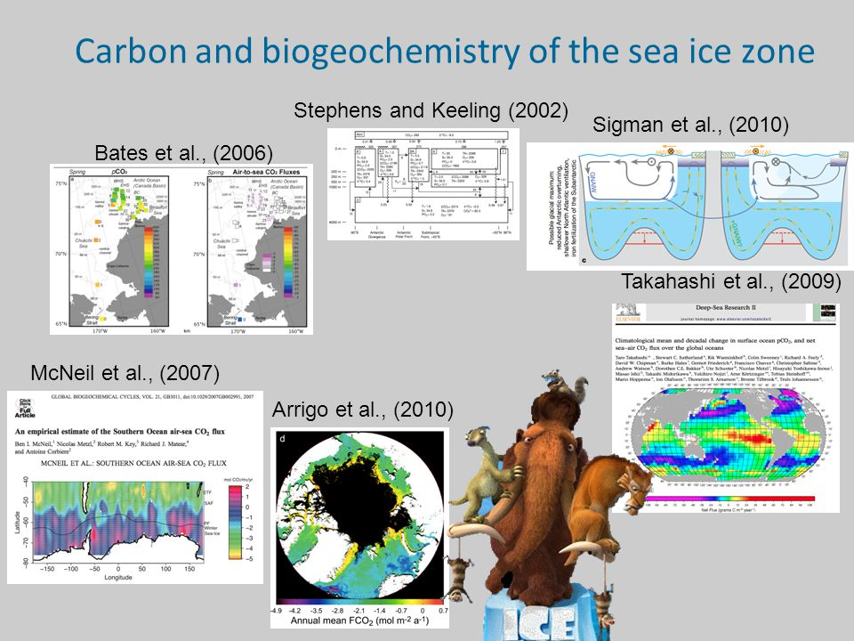 Carbon and biogeochemistry of the sea ice zone Bates et al., (2006) Stephens and Keeling (2002) Sigman et al., (2010) Takahashi et al., (2009) Arrigo et al., (2010) McNeil et al., (2007)