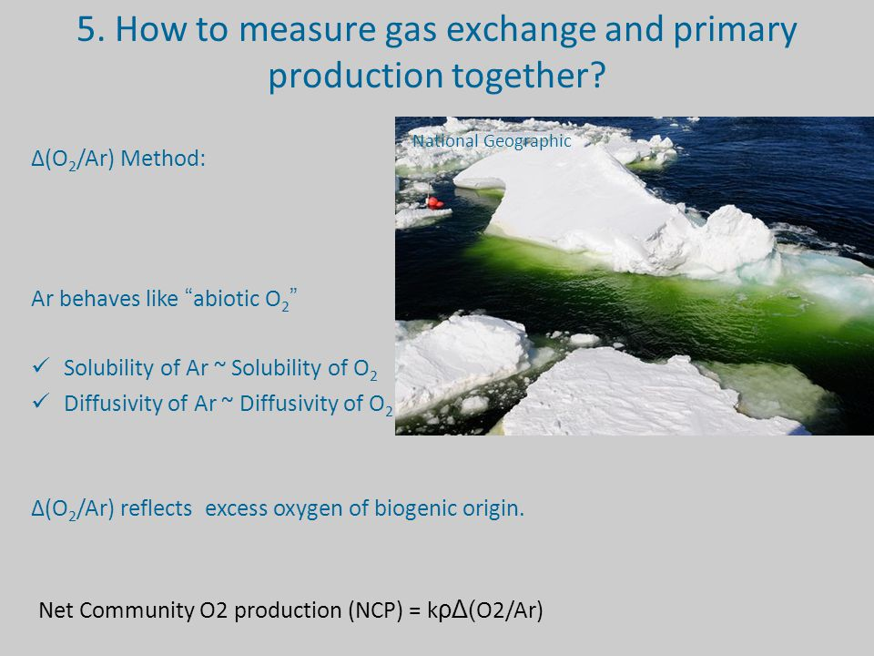 5.How to measure gas exchange and primary production together.