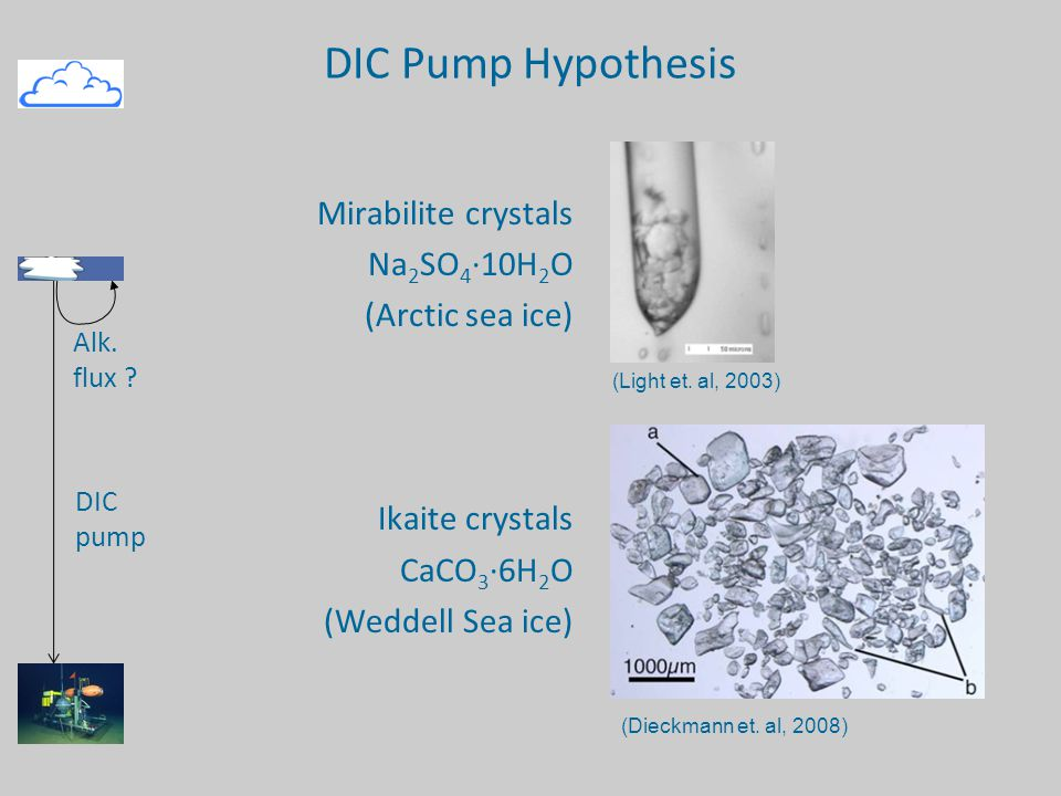 DIC Pump Hypothesis Mirabilite crystals Na 2 SO 4 ·10H 2 O (Arctic sea ice) Ikaite crystals CaCO 3 ·6H 2 O (Weddell Sea ice) (Light et.