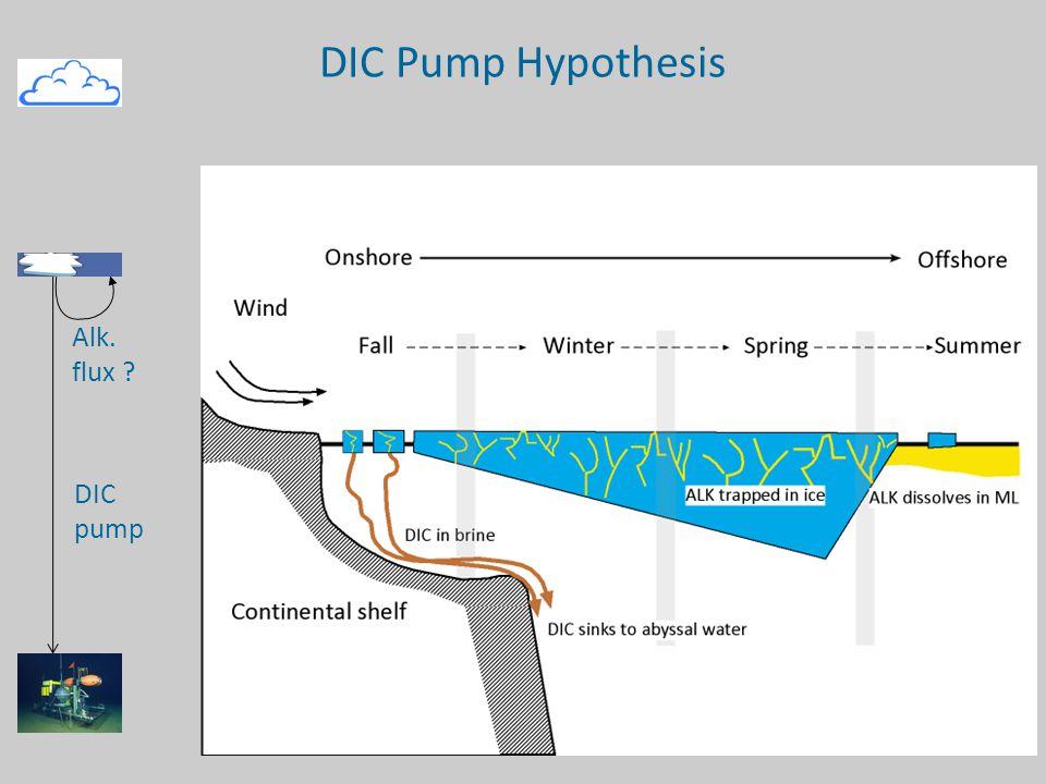 DIC Pump Hypothesis DIC pump Alk. flux Zero sum gain scenario