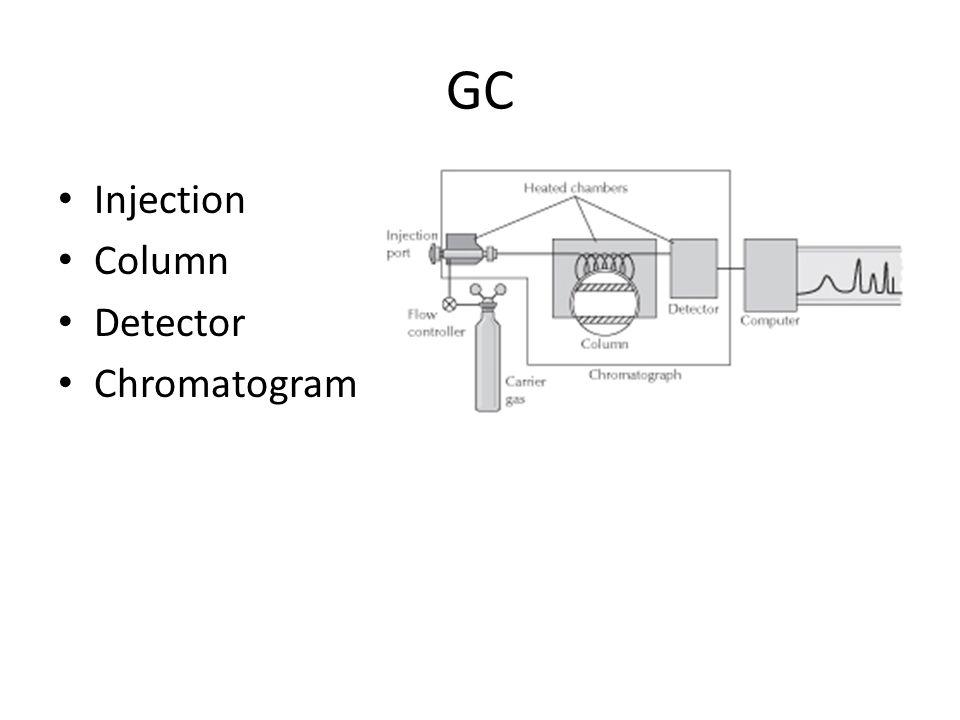 GC Injection Column Detector Chromatogram