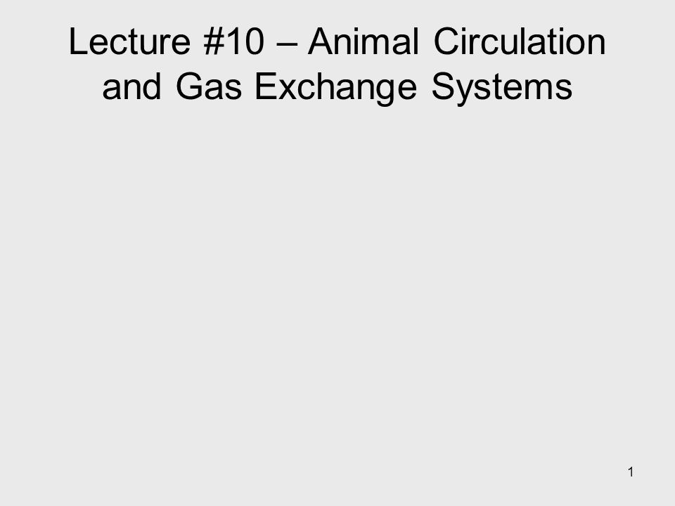 1 Lecture #10 – Animal Circulation and Gas Exchange Systems