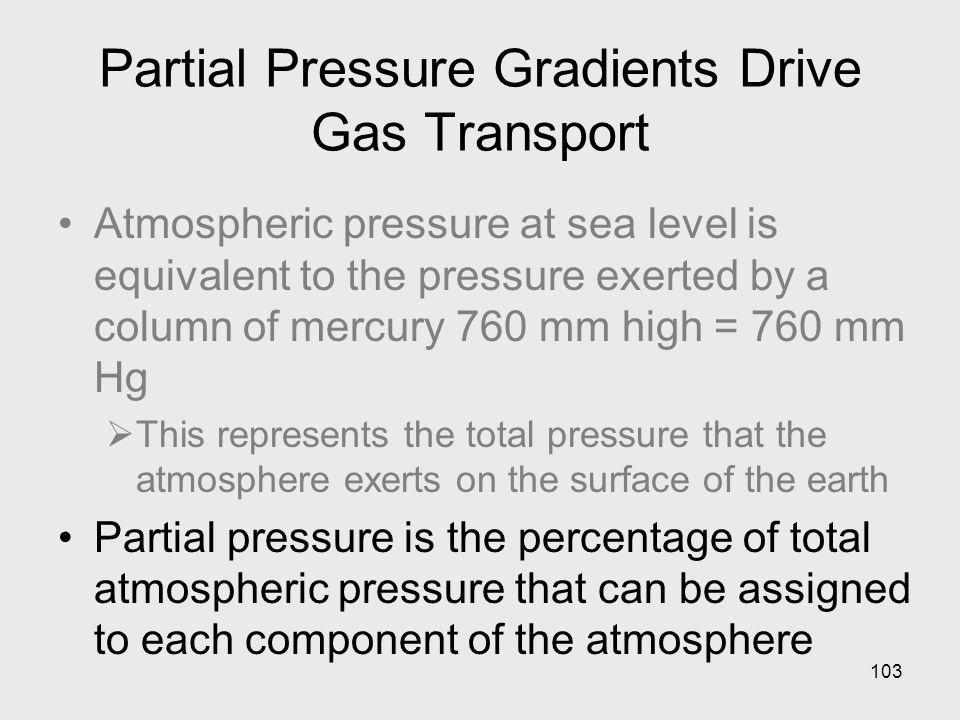 103 Partial Pressure Gradients Drive Gas Transport Atmospheric pressure at sea level is equivalent to the pressure exerted by a column of mercury 760