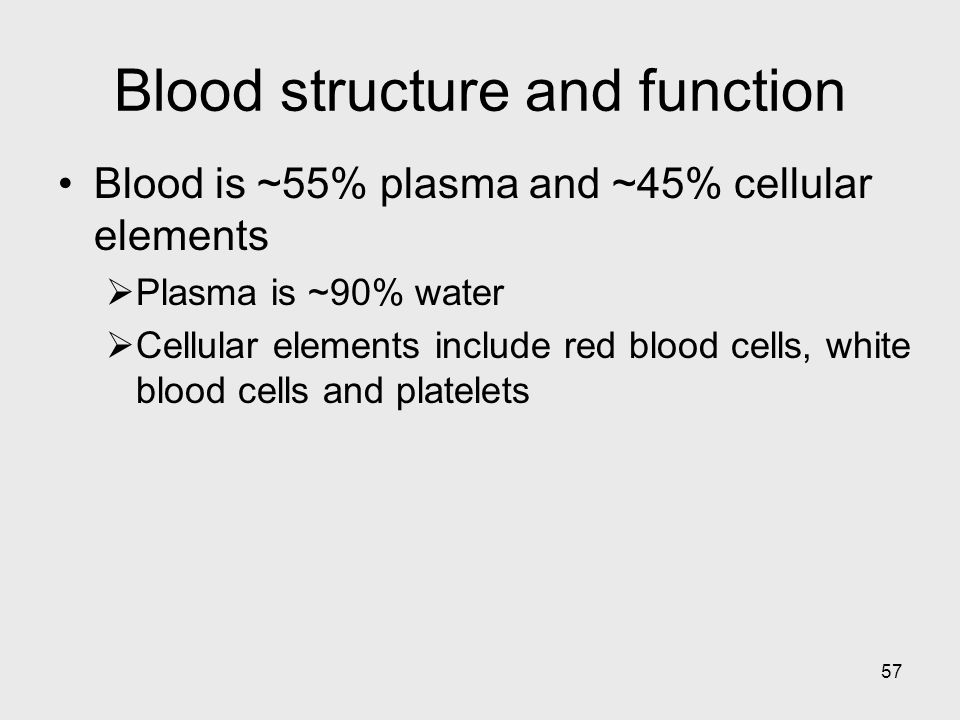 57 Blood structure and function Blood is ~55% plasma and ~45% cellular elements Plasma is ~90% water Cellular elements include red blood cells, white