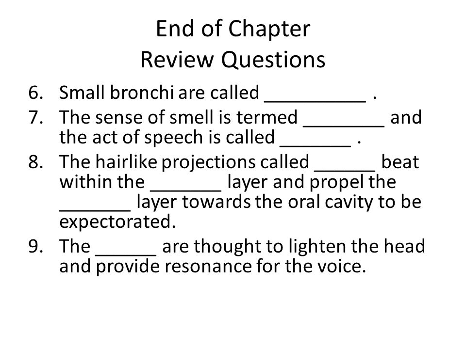 End of Chapter Review Questions 6.Small bronchi are called __________.