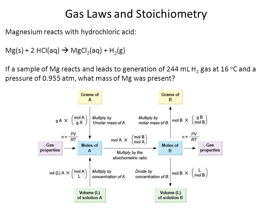 Gas Laws and Stoichiometry Magnesium reacts with hydrochloric acid: Mg(s) + 2 HCl(aq) MgCl 2 (aq) + H 2 (g) If a sample of Mg reacts and leads to gene