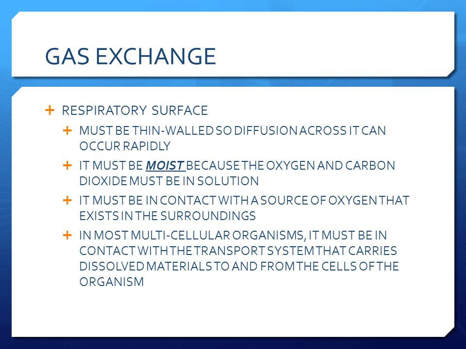 GAS EXCHANGE RESPIRATORY SURFACE MUST BE THIN-WALLED SO DIFFUSION ACROSS IT CAN OCCUR RAPIDLY IT MUST BE MOIST BECAUSE THE OXYGEN AND CARBON DIOXIDE M