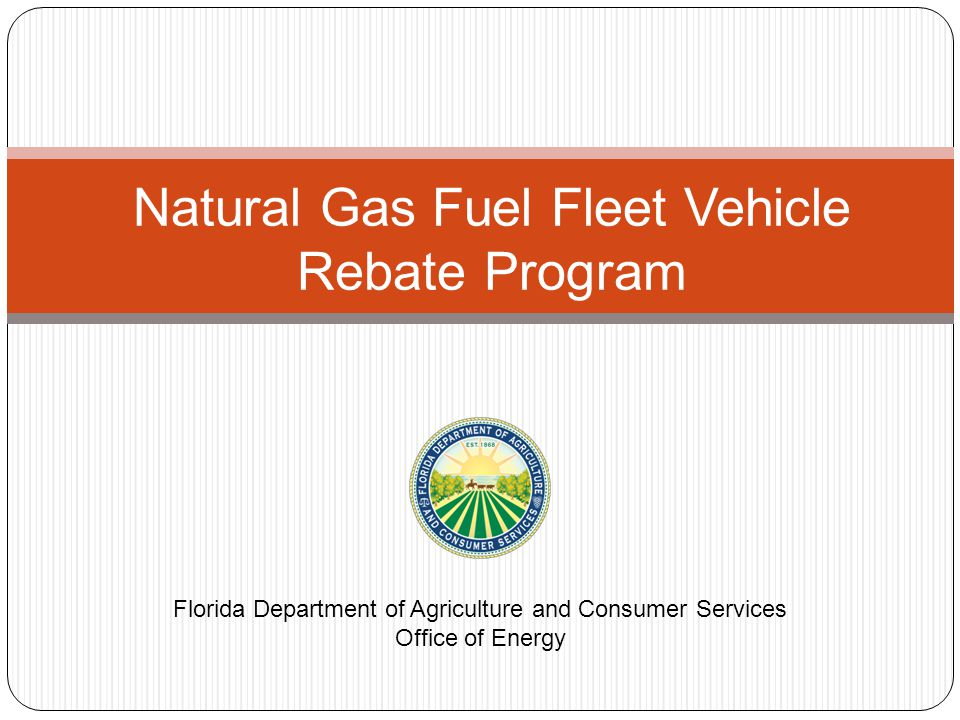 HB 579 Signed by Governor Scott on June 14, 2013 Addresses taxation natural gas fuels Licensing of natural gas fuels Reporting of natural gas fuels Section 17 – Natural Gas Fuel Fleet Vehicle Rebate (1) CREATION AND PURPOSE OF THE PROGRAM – There is created within the Department of Agriculture and Consumer Services a natural gas fuel fleet vehicle rebate program.