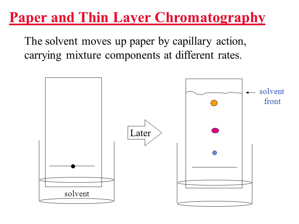 How Does Chromatography Work.