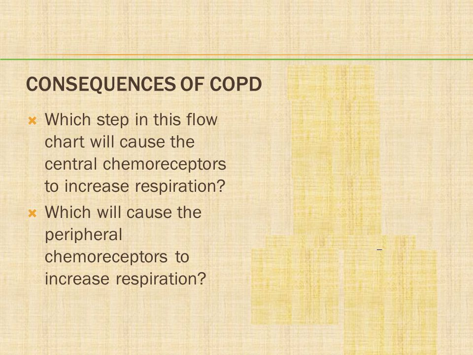 CONSEQUENCES OF COPD Which step in this flow chart will cause the central chemoreceptors to increase respiration? Which will cause the peripheral chem