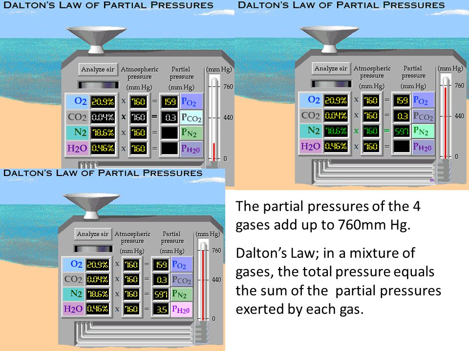 The partial pressures of the 4 gases add up to 760mm Hg.