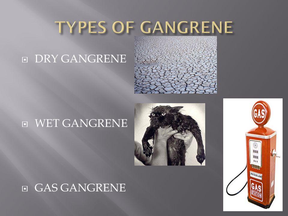 DRY GANGRENE WET GANGRENE GAS GANGRENE