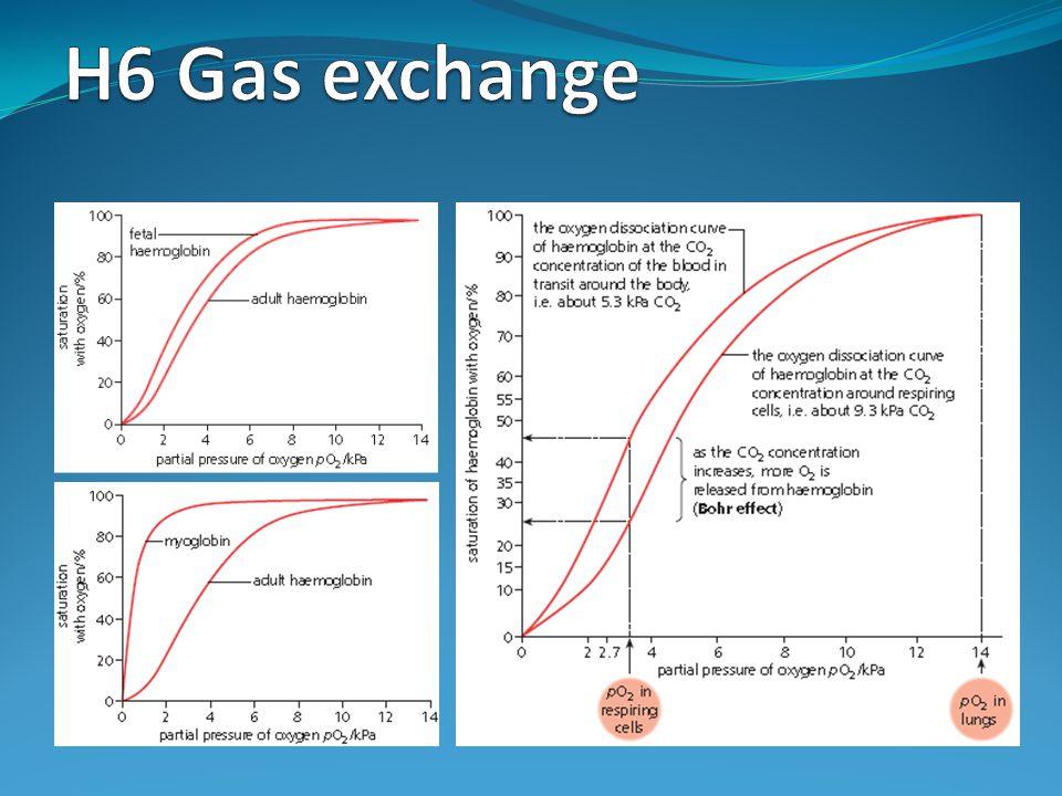 Assessment Statements H.6.1 Define partial pressure.