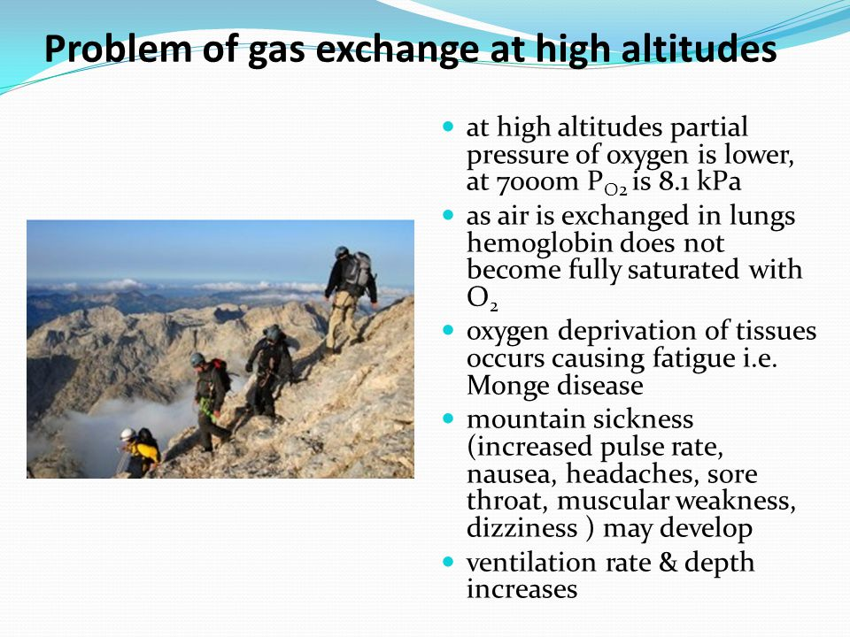 Problem of gas exchange at high altitudes at high altitudes partial pressure of oxygen is lower, at 7000m P O2 is 8.1 kPa as air is exchanged in lungs