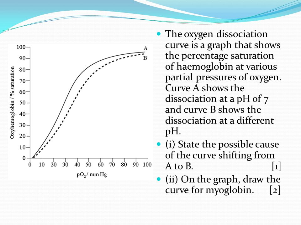 The oxygen dissociation curve is a graph that shows the percentage saturation of haemoglobin at various partial pressures of oxygen. Curve A shows the