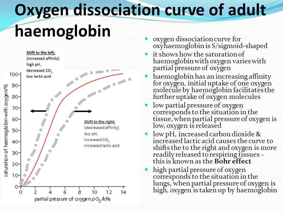 Oxygen dissociation curve of fetal haemoglobin between foetal & adult haemoglobin, which one has a higher affinity for oxygen.