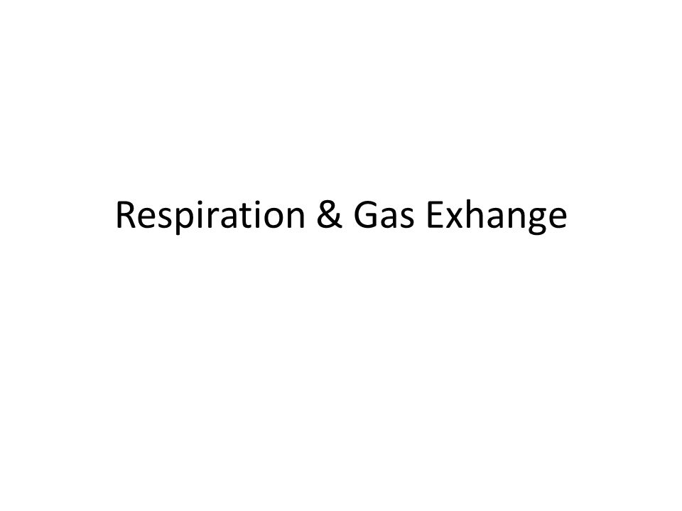 Respiration Two processes: 1.Release of energy from breakdown of food molecules.