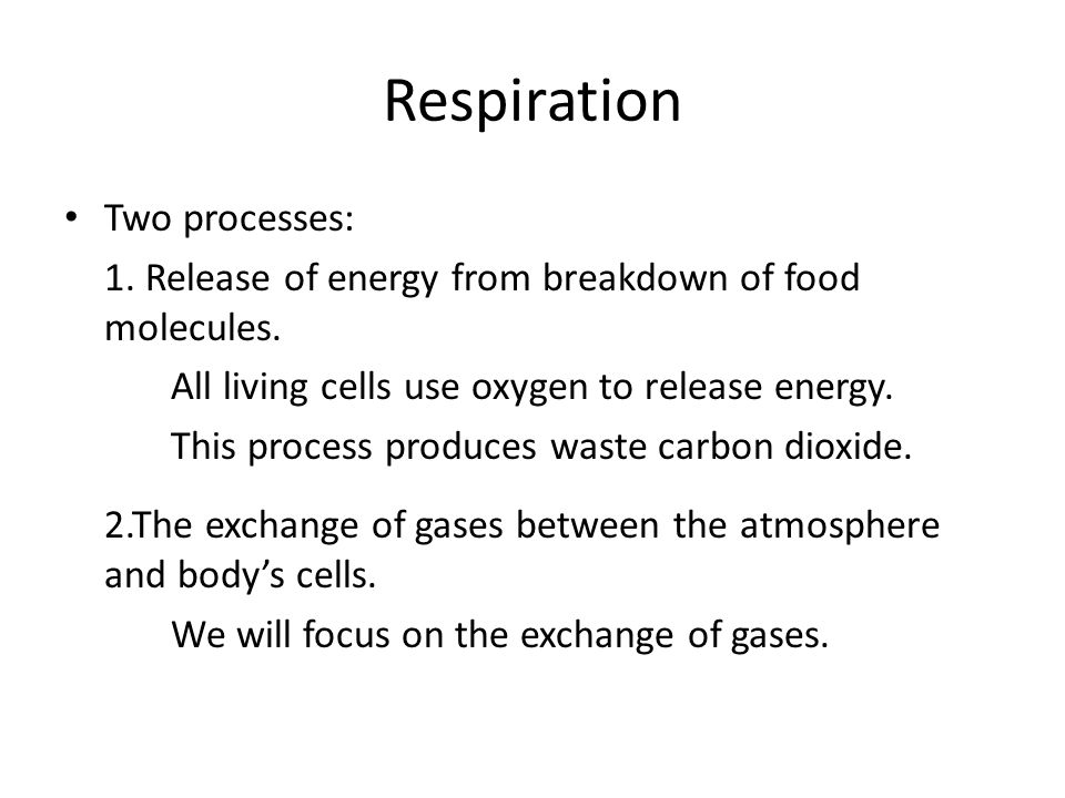 So what are the functions of the respiratory system.