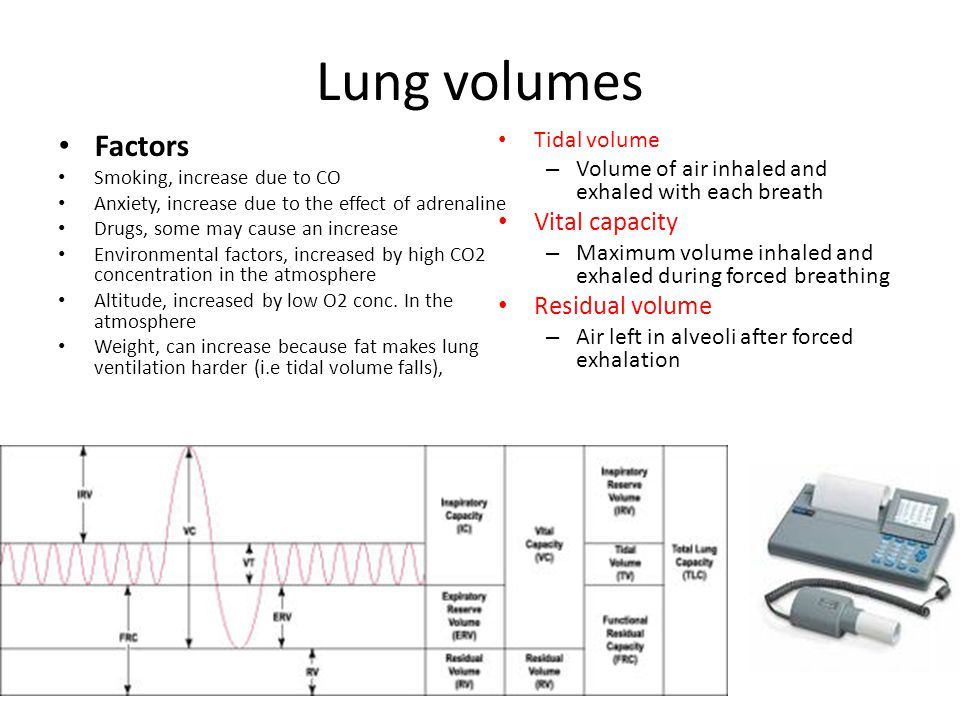 Lungs Increase