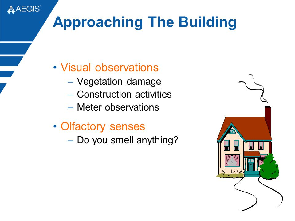 Approaching The Building Visual observations –Vegetation damage –Construction activities –Meter observations Olfactory senses –Do you smell anything