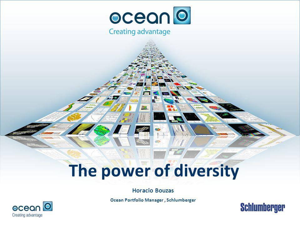 Horacio Bouzas Ocean Portfolio Manager, Schlumberger The power of diversity